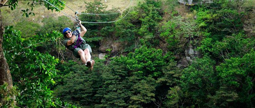 Borinquen - zipline canopy tour