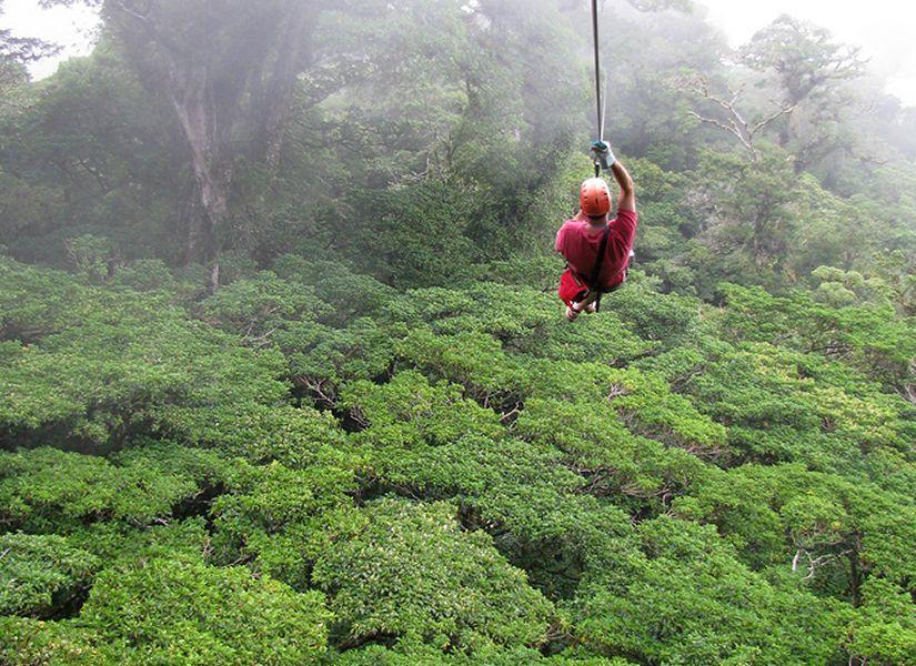 Costa Rica - Congo Trail Canopy & Costa Rica Zip Line Tours - Congo Trail   Tomato Adventures